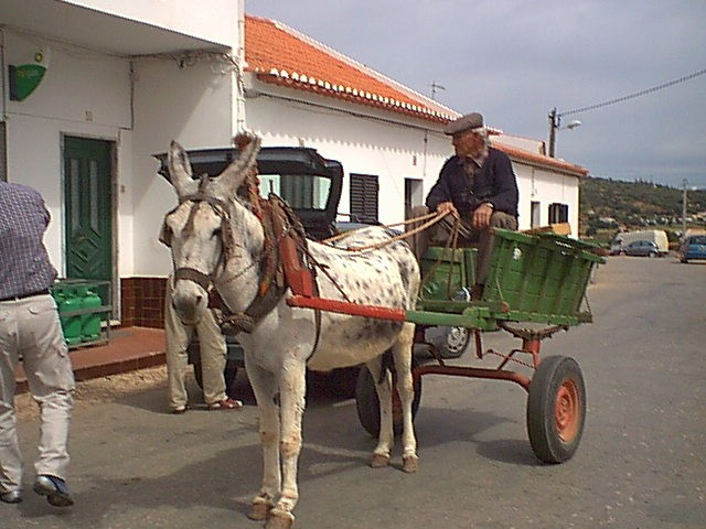 Localtransport