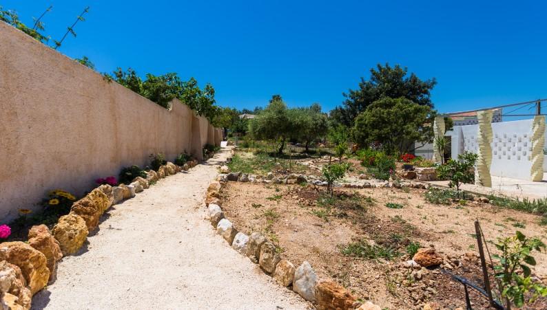 Garden pathway to patio